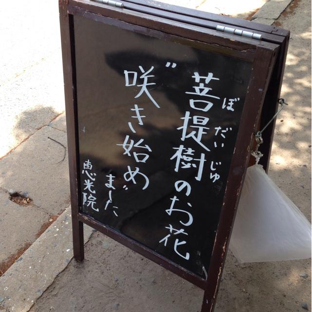 f:id:kimaya:20140529115700j:plain