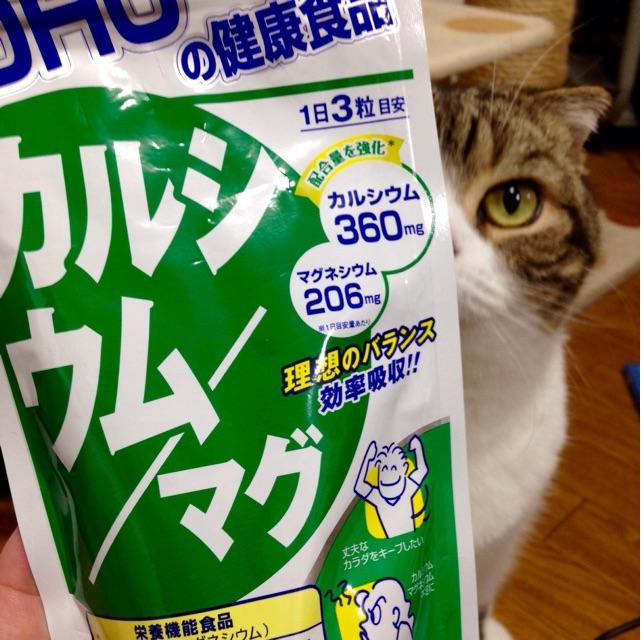 f:id:kimaya:20141014165621j:plain
