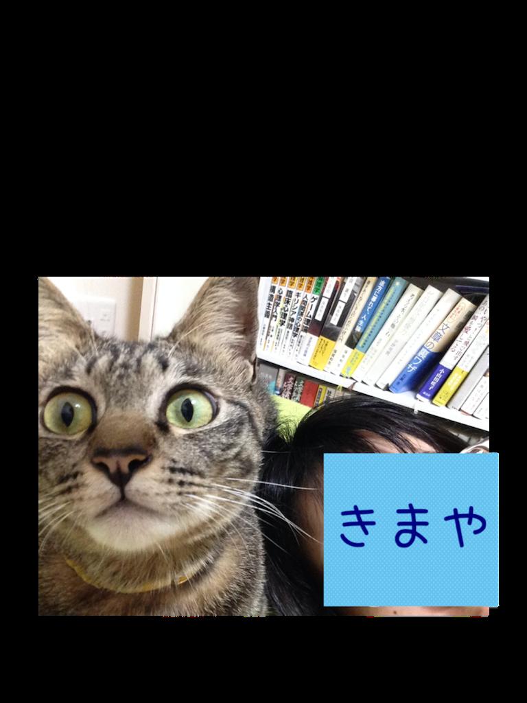f:id:kimaya:20160818202930p:image