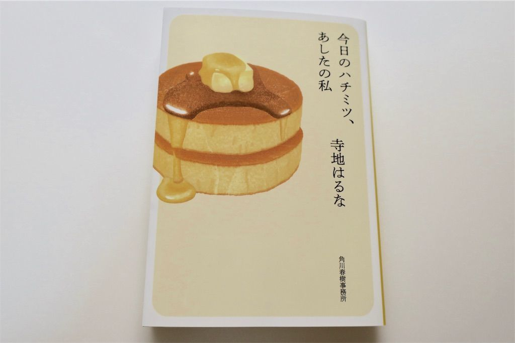 f:id:kimaya:20190422165359j:image