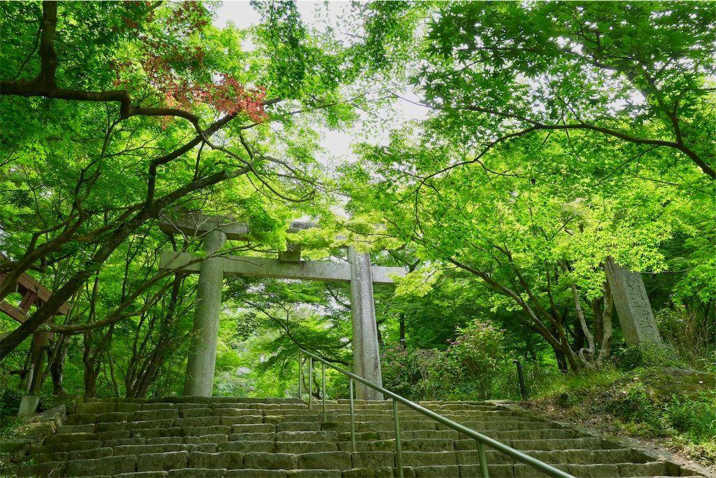 竈門神社の鳥居