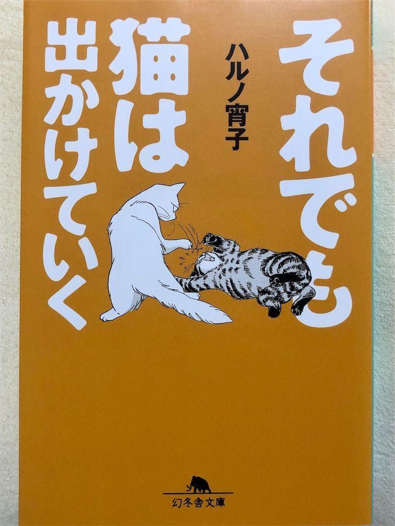 f:id:kimaya:20200422132817j:image