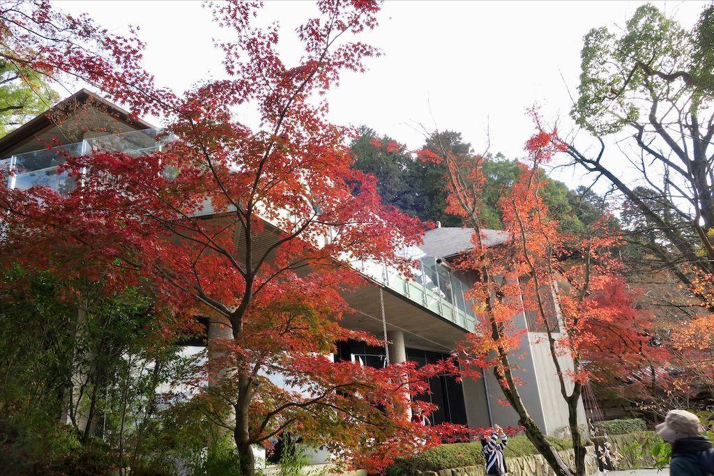 f:id:kimaya:20201115122639j:image