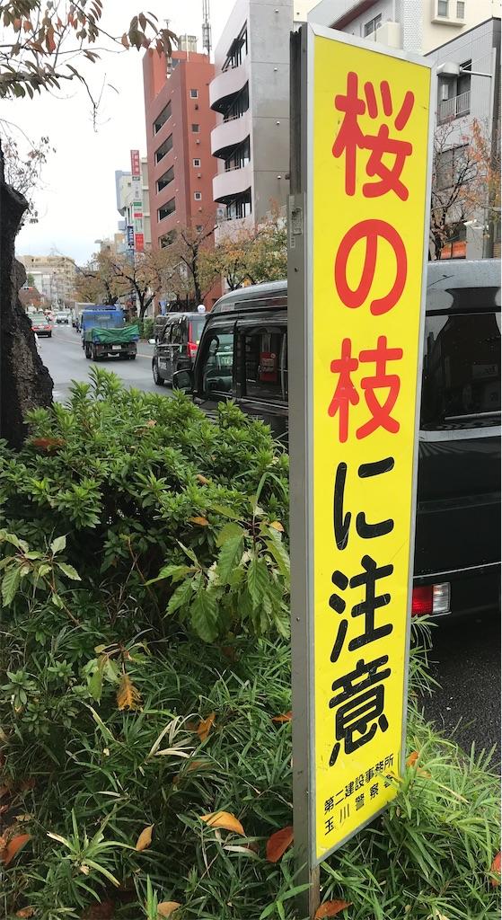 f:id:kimetsu-yukichan:20201126190003j:image