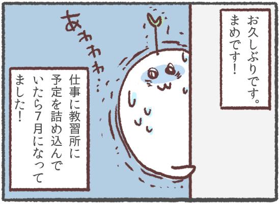 f:id:kimi08:20160706001657p:plain
