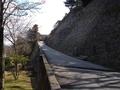 清川町桜坂