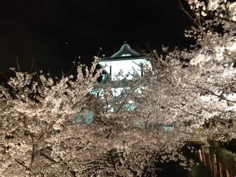 桜石川門1