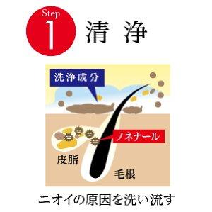 f:id:kiminonaha03:20161114213423j:plain