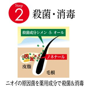 f:id:kiminonaha03:20161114213506j:plain