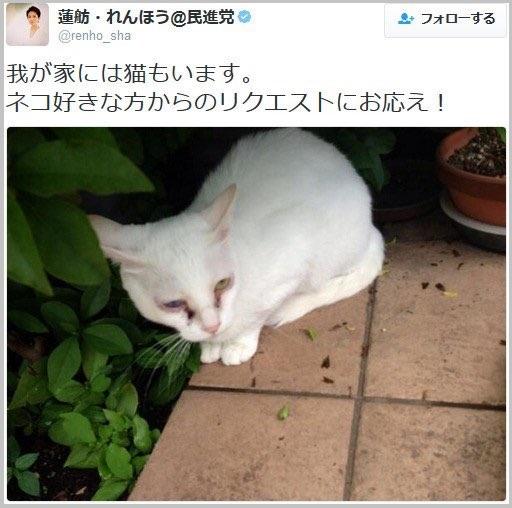 f:id:kiminonaha03:20161127013552j:plain