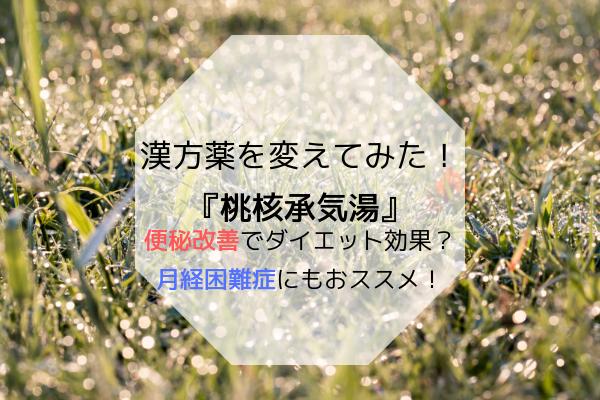 f:id:kimissmam:20190308004955p:plain