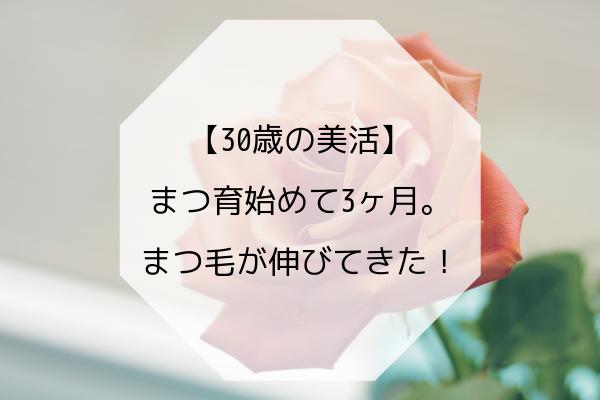 f:id:kimissmam:20190408165434p:plain