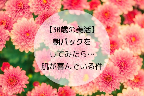 f:id:kimissmam:20190416125005p:plain