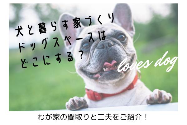 犬と暮らす家づくり|ドッグスペースはどこにする?わが家の間取りと工夫をご紹介!