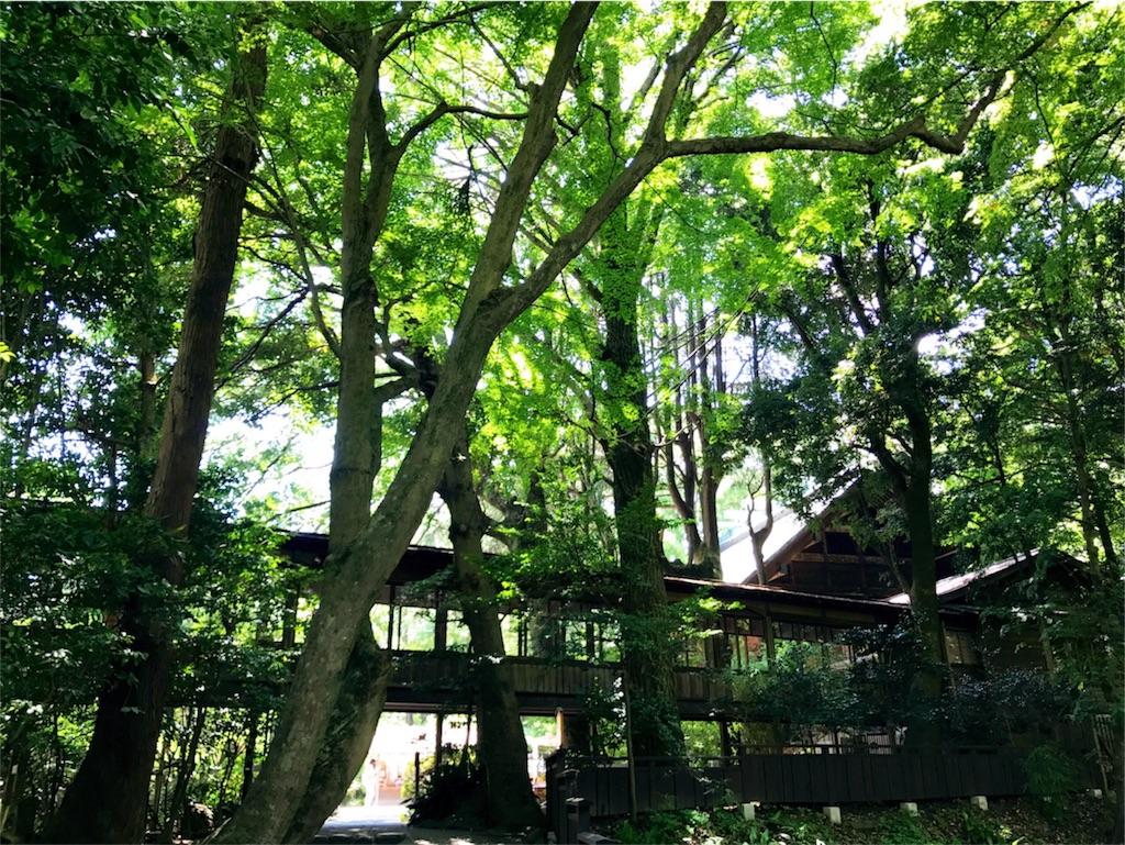 f:id:kimono-miko:20170726214321j:image