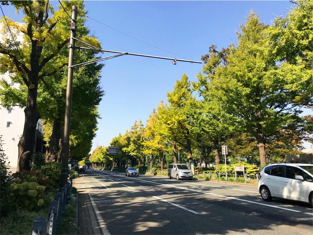 f:id:kimono-miko:20171031114530j:image