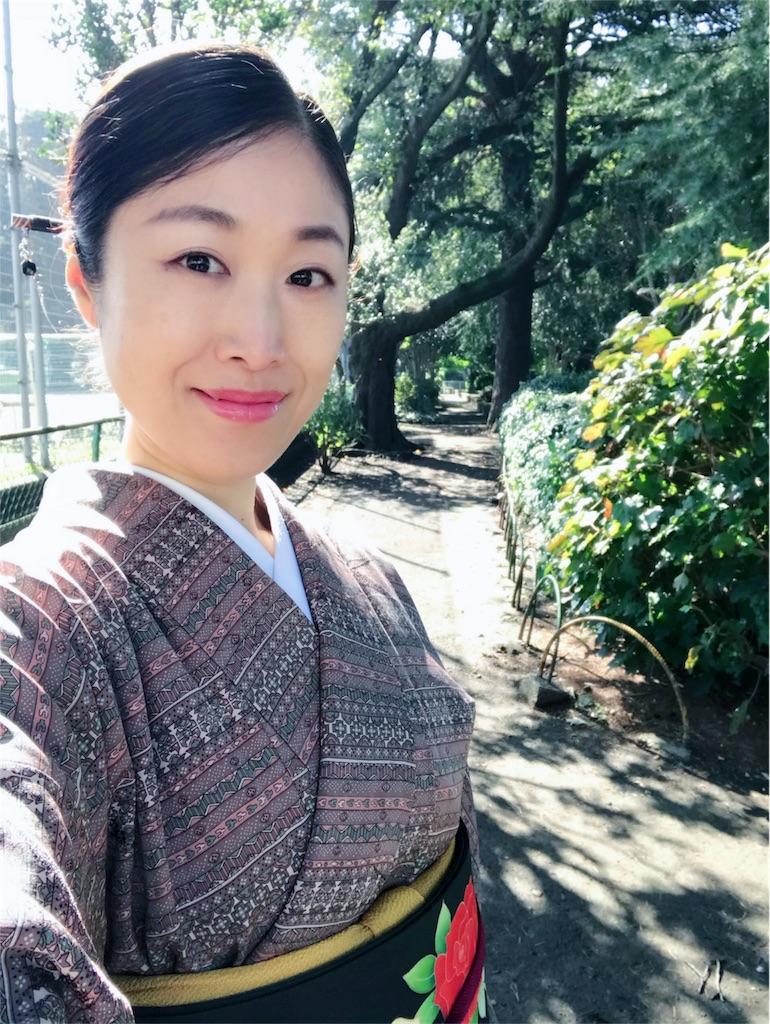 f:id:kimono-miko:20171103002105j:image