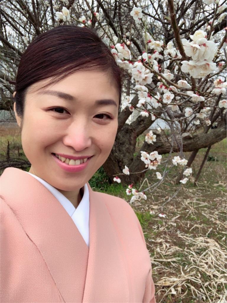 f:id:kimono-miko:20180306143542j:image