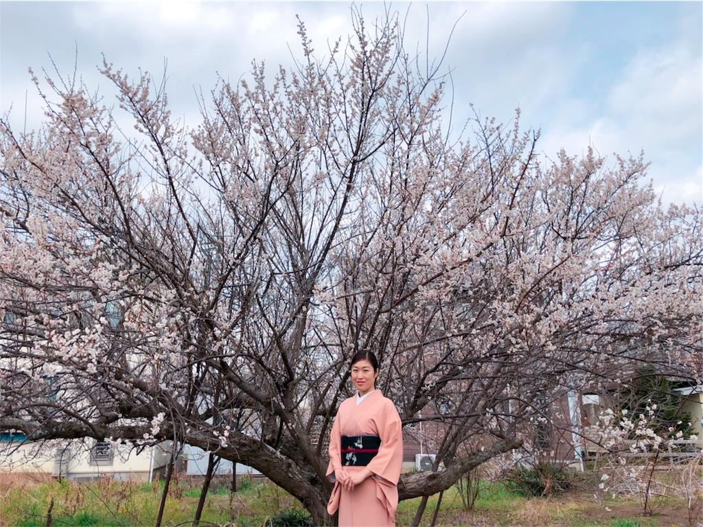 f:id:kimono-miko:20180308141122j:image