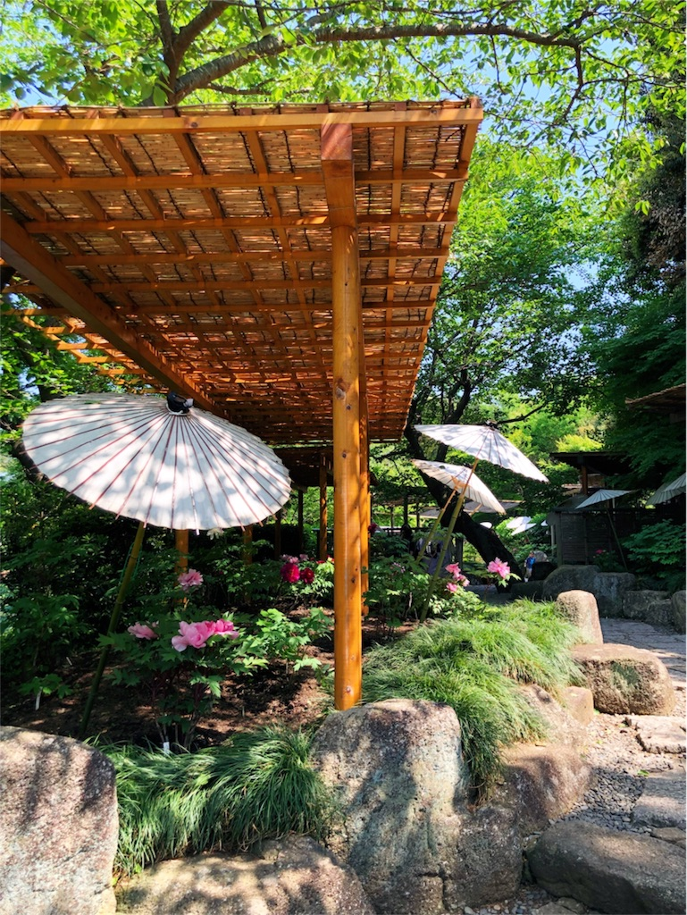 f:id:kimono-miko:20180428071226j:image