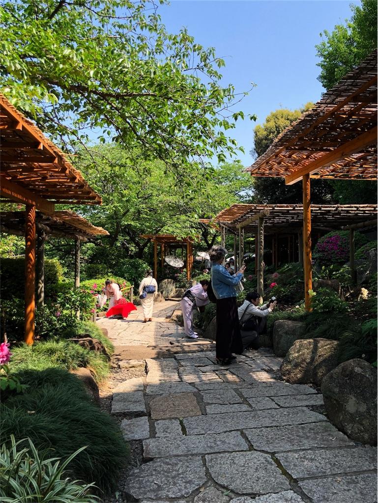 f:id:kimono-miko:20180428072547j:image