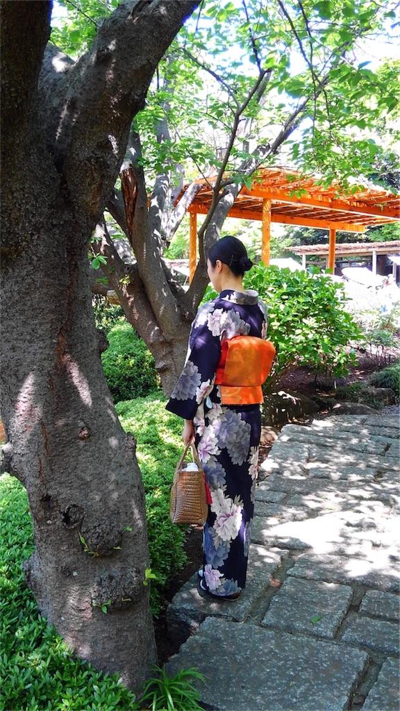 f:id:kimono-miko:20180428075020j:image