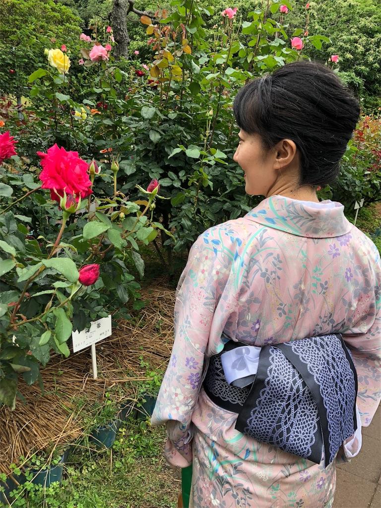 f:id:kimono-miko:20180618193621j:image
