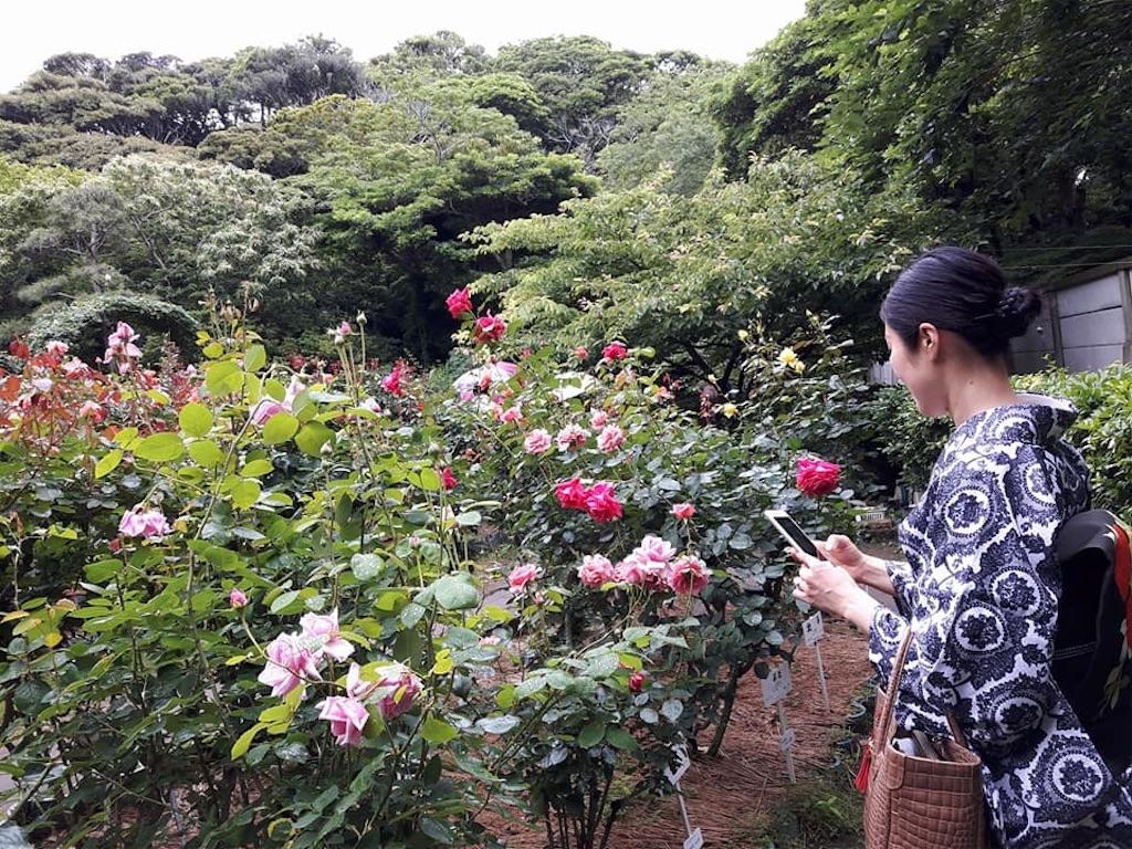 f:id:kimono-miko:20180618193626j:image
