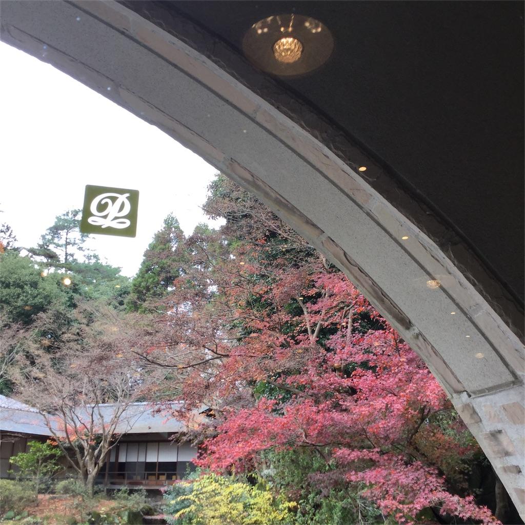 f:id:kimono-zoo:20161214195618j:image