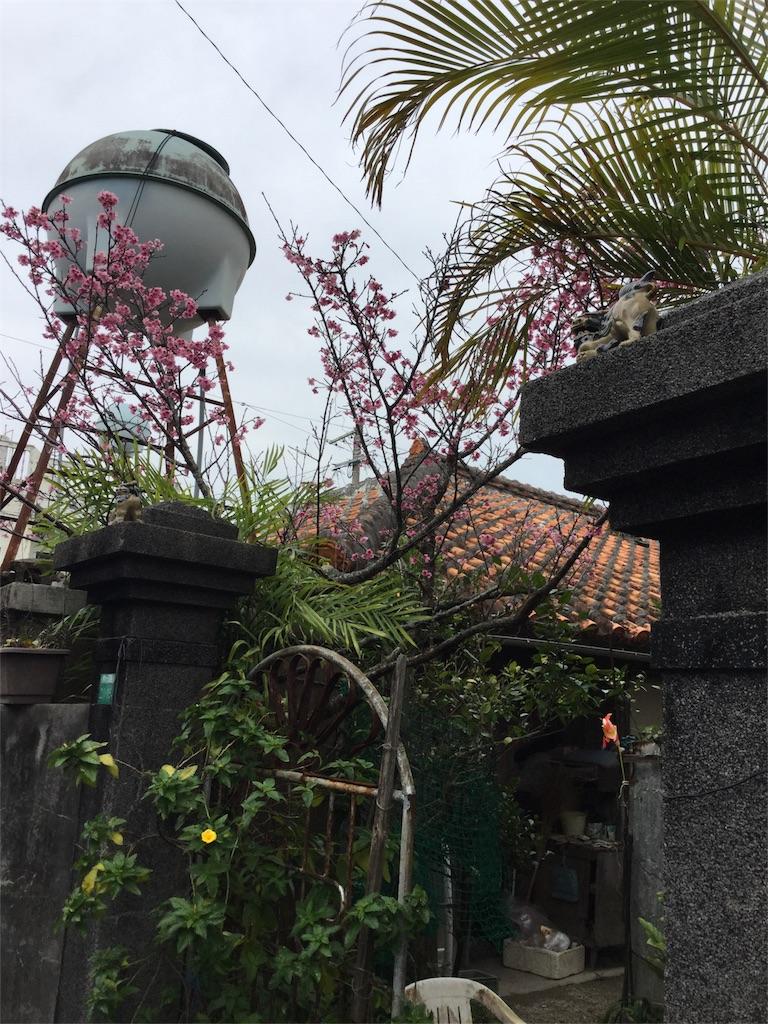 f:id:kimono-zoo:20170225013806j:image