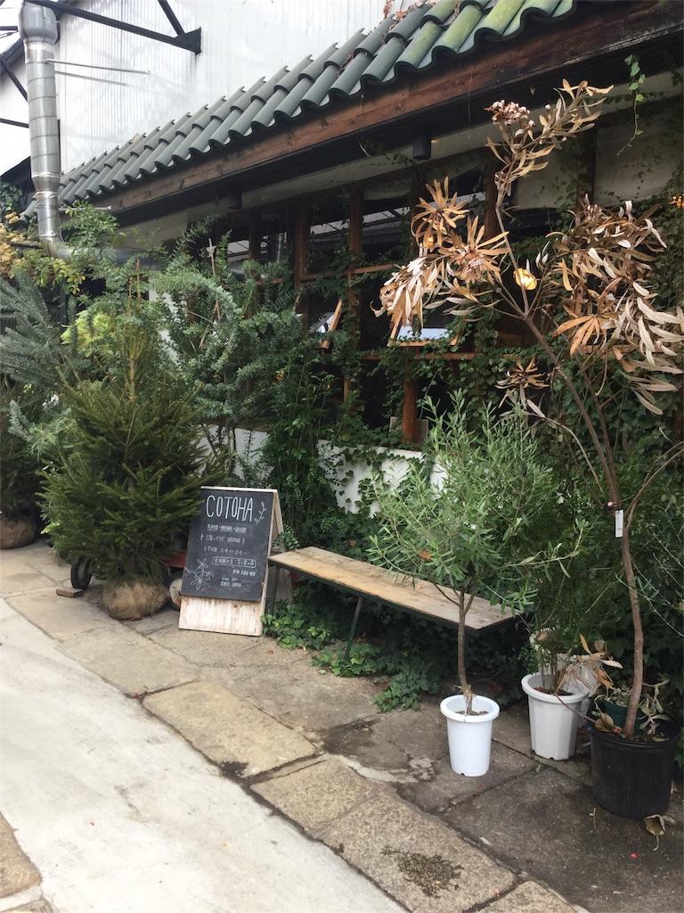f:id:kimono-zoo:20171113232818j:image