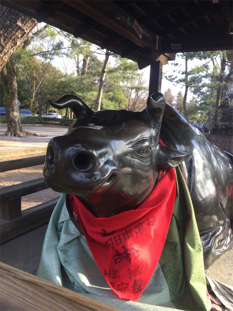 f:id:kimono-zoo:20180204003654j:image