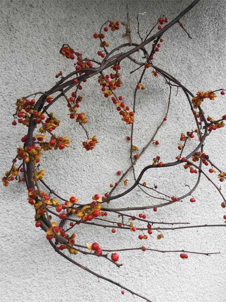 f:id:kimono-zoo:20181104232648j:image