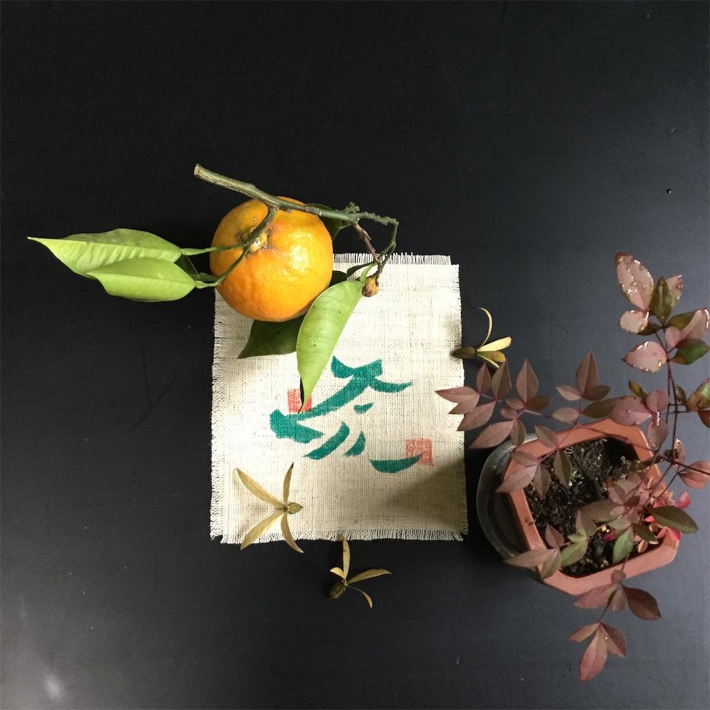 f:id:kimono-zoo:20190107192050j:image