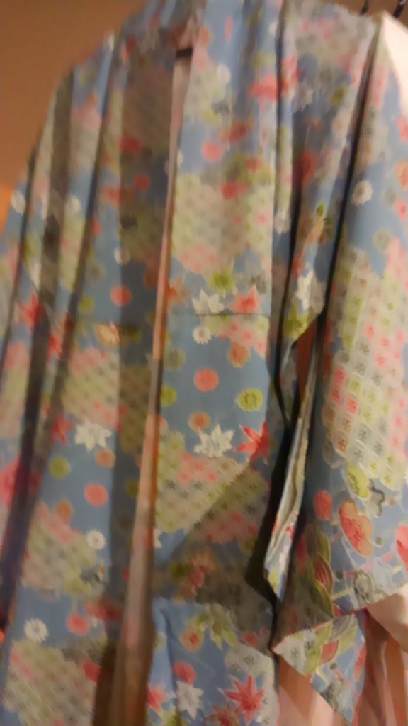 f:id:kimono37konomi:20161107151018j:plain