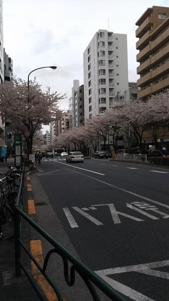 f:id:kimono37konomi:20170406170148j:plain