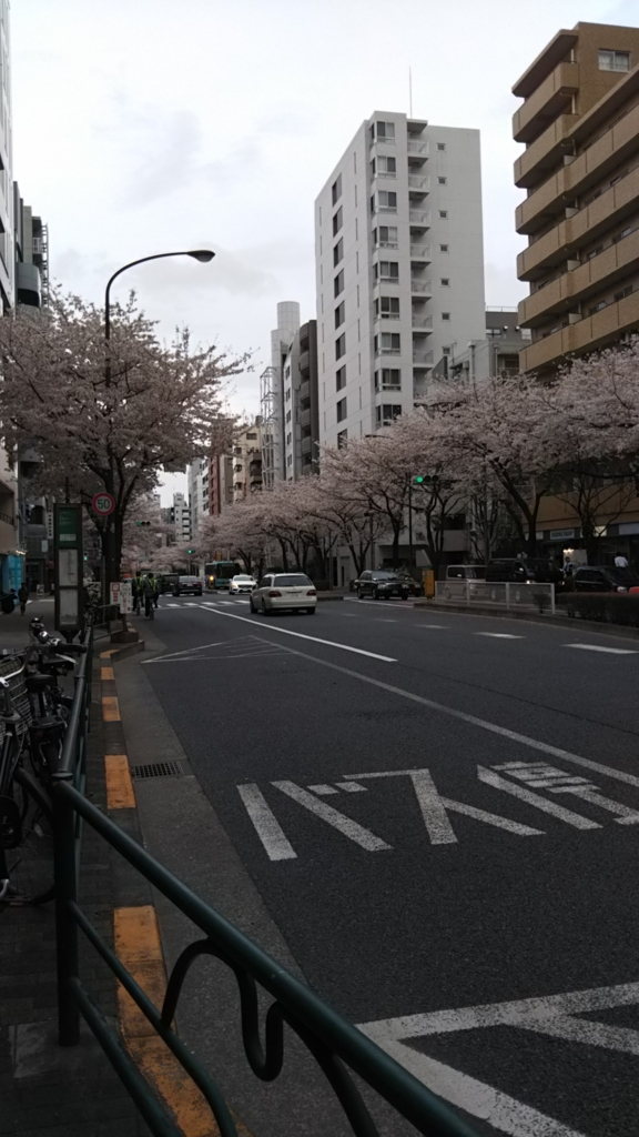 f:id:kimono37konomi:20170406170532j:plain