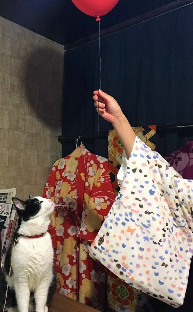 f:id:kimono_atelier_akane:20190212134013j:plain