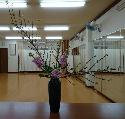 f:id:kimonohajimekaeru:20170120000312j:plain