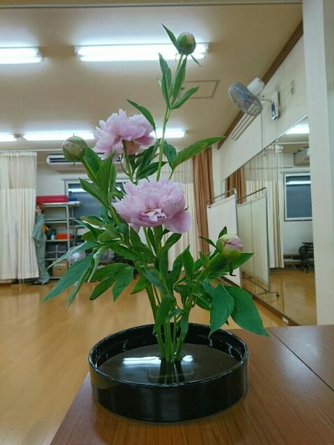 f:id:kimonohajimekaeru:20170602124312j:plain