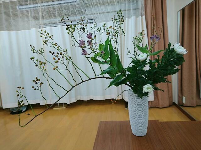 f:id:kimonohajimekaeru:20171010222651j:image