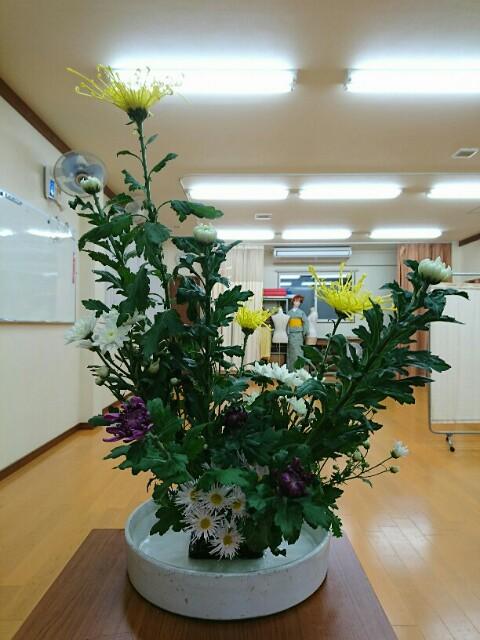 f:id:kimonohajimekaeru:20171113135441j:image