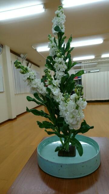 f:id:kimonohajimekaeru:20180121001613j:image