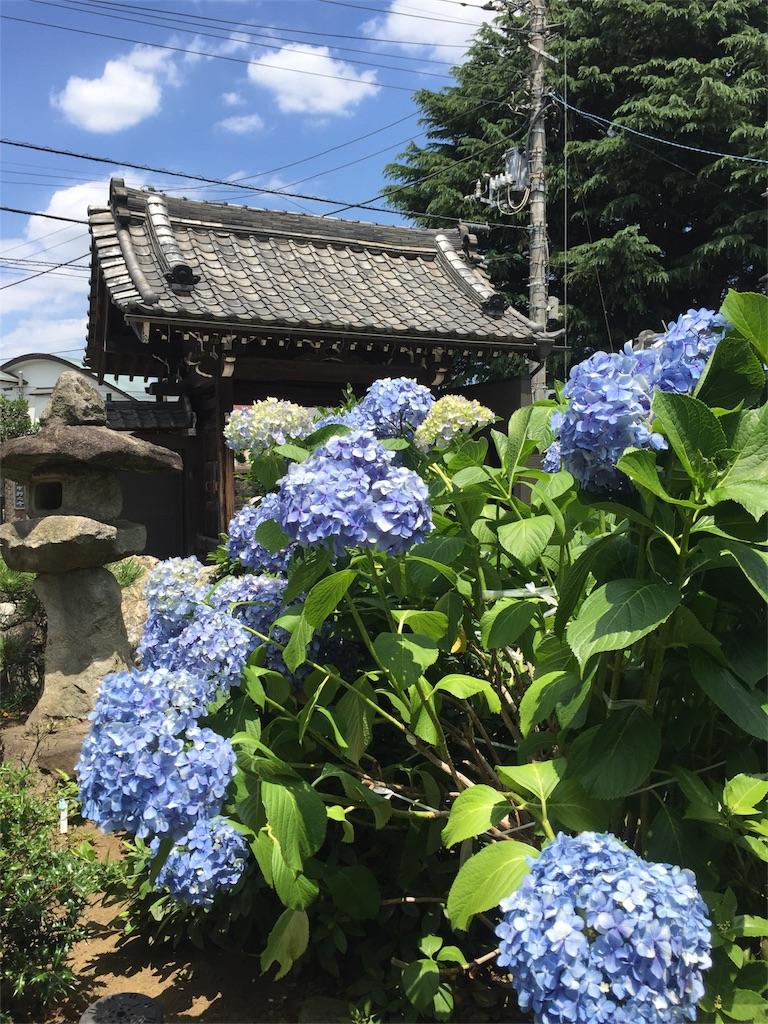 f:id:kimonox:20170618224806j:image