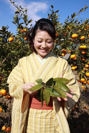 f:id:kimonoya3daime:20100517225150j:image