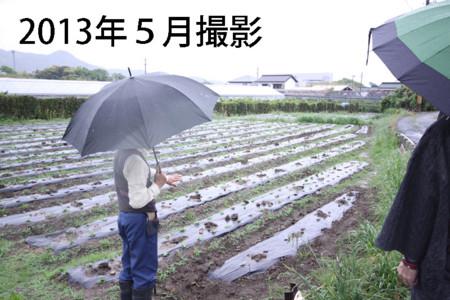 f:id:kimonoya3daime:20130909182632j:image