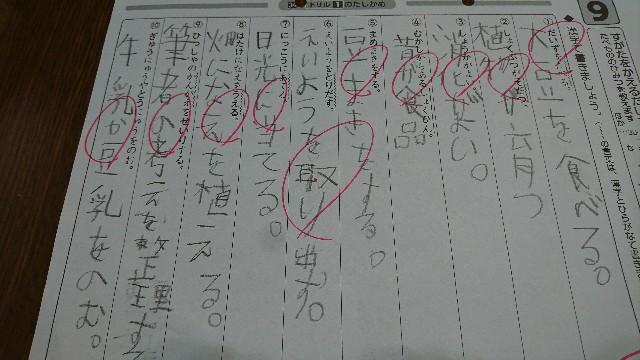 f:id:kimotamakachan:20171218143934j:image