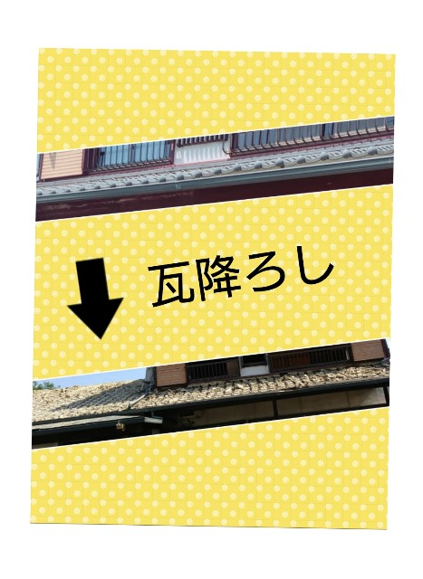 f:id:kimotamakachan:20180615133024j:image