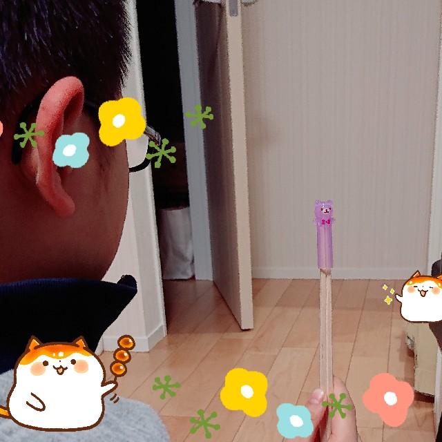f:id:kimotamakachan:20190321012621j:image