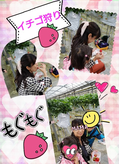 f:id:kimotamakachan:20190506012344j:image